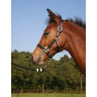 Horka Leather Foal Halter