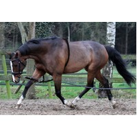 Horka Cotton Lunging Aid