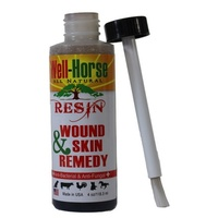 Well Horse Resin